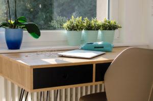 Bureau bois et plantes